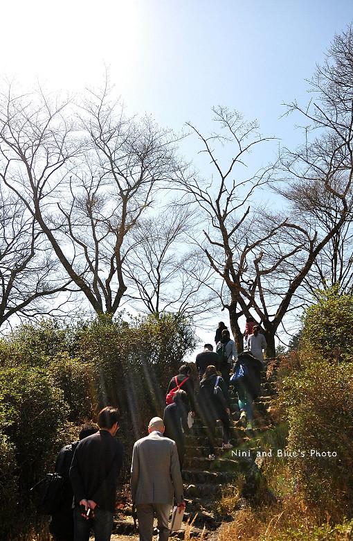 日本嵐山高雄保津川08