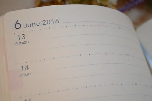 ノルティ 手帳 2016