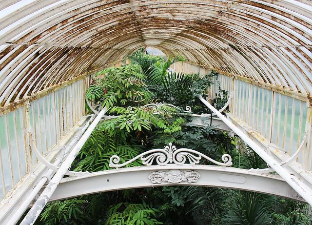 Kew Gardens3