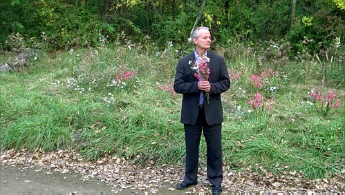 Broken Flowers - screenshot 5