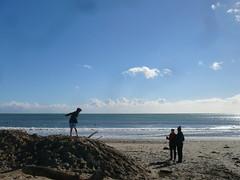 Sandy berm