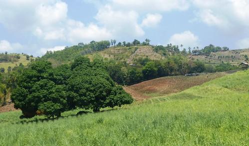 P16-Negros-San Carlos-Dumaguete-Route (35)