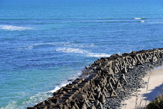 shore 海岸