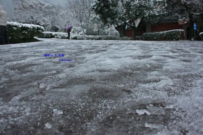2016-台北陽明山-瑞雪-難得一見的雪白山景-17度C隨拍 (26)