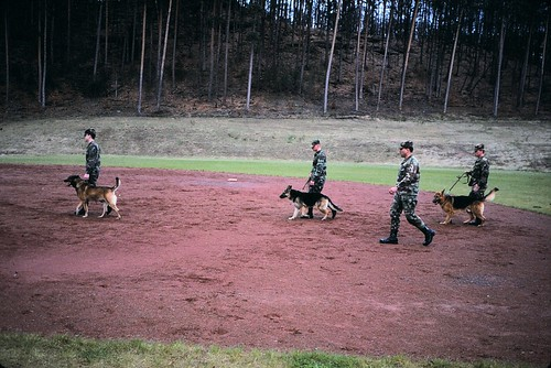 West Germany   -   Pirmasens   -   59th Ord. Brigade   -   Working guard dog demonstration   -   February 1989