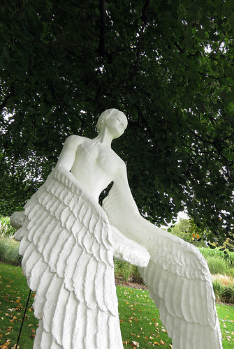 An angel sculpture in Dublin Botanical Garden