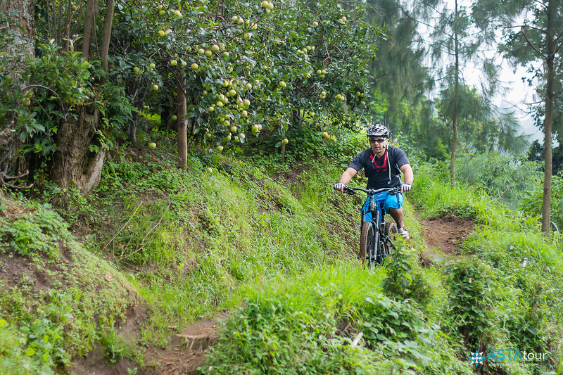 Mountain Biking Bromo tour of Mr Yaser Shala