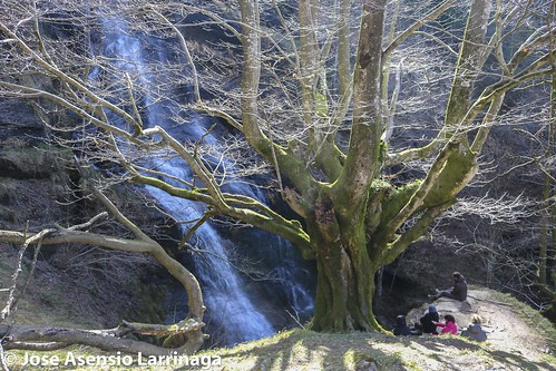 Parque Natural de Gorbeia  #DePaseoConLarri #Flickr -3083