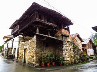 Camino Primitivo - 1 Oviedo-Grado (96)