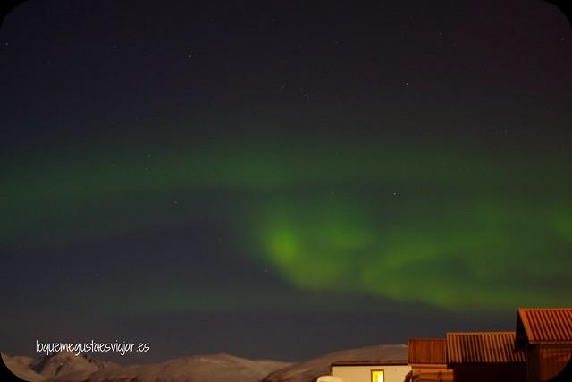 Auroras8