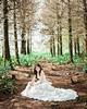 I like the dream forest #forest #bride #love #weddingdress #pretty #dream #beautiful #marry #weddingphotographer #weddingphotography #photography #photographer  #taiwan #chinese #pose #toronto #canada #elegance #美式婚禮 #美式婚紗 #婚禮 #婚紗 #thestage #film #filmpho