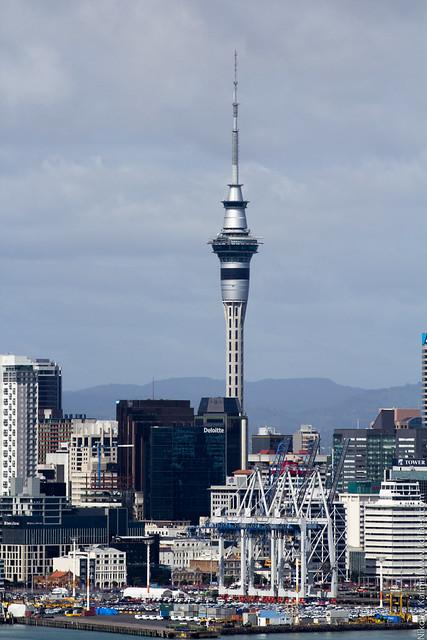 NZ_18-23