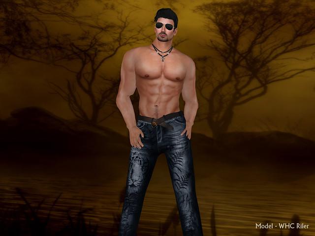 whc brocade tiger jeans 2_001