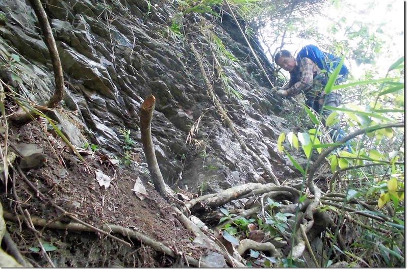 垂直岩壁區(下山) 2