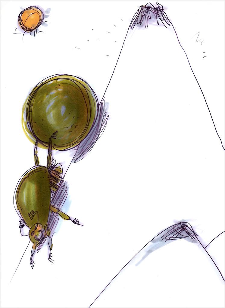 Навозный-жук