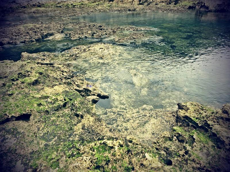蘭嶼浮潛-環島景點-17度c隨拍 (11)