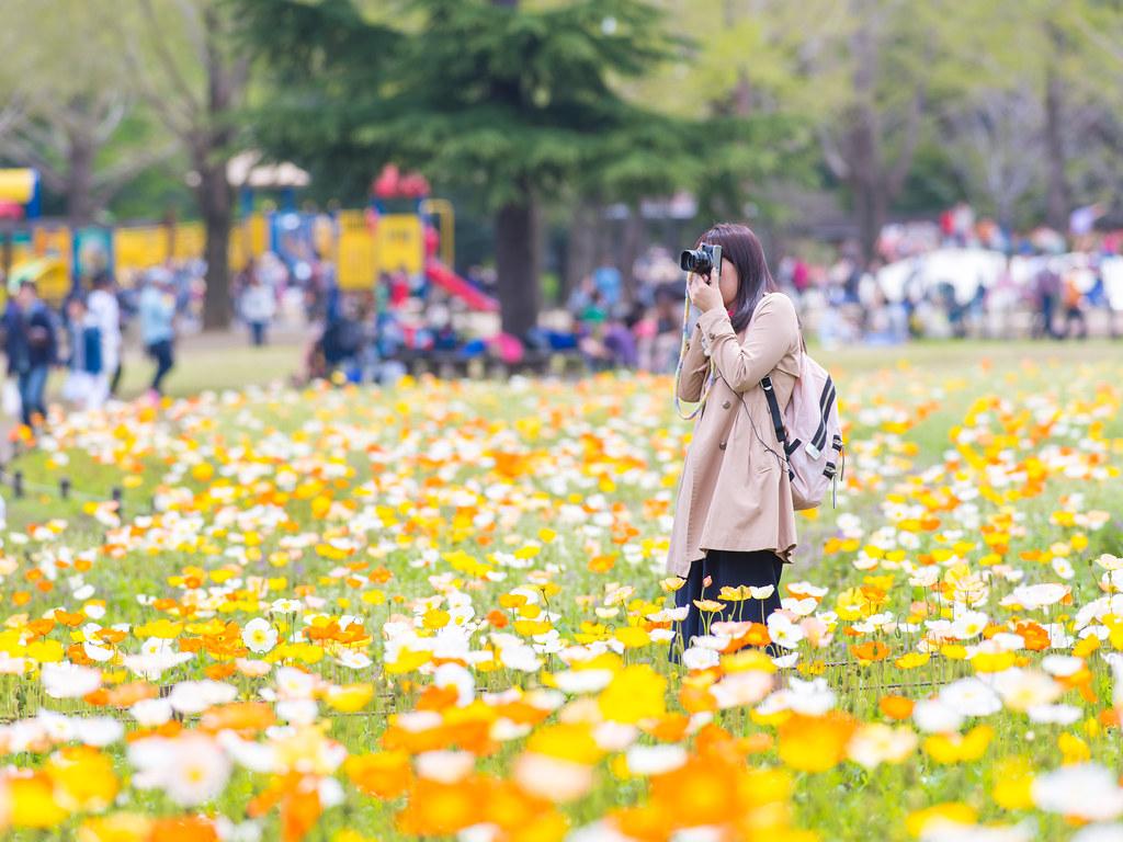 春の昭和記念公園④