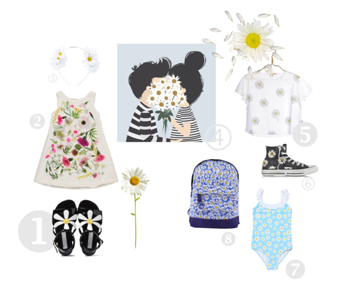 all about daisies