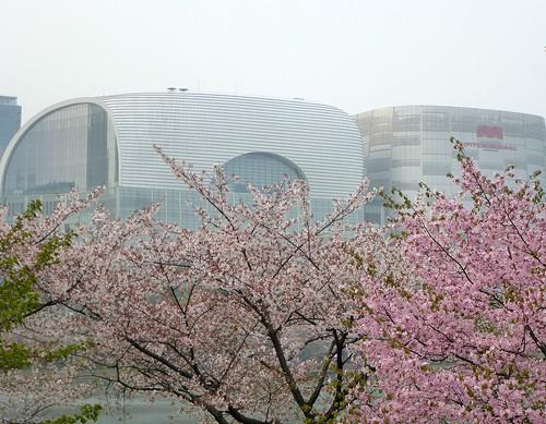 C16-Seoul-Parc Seokcho(15)