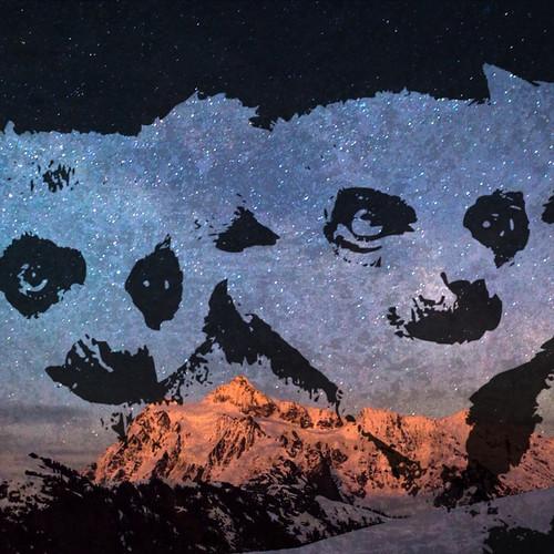 Lemurs digital collage