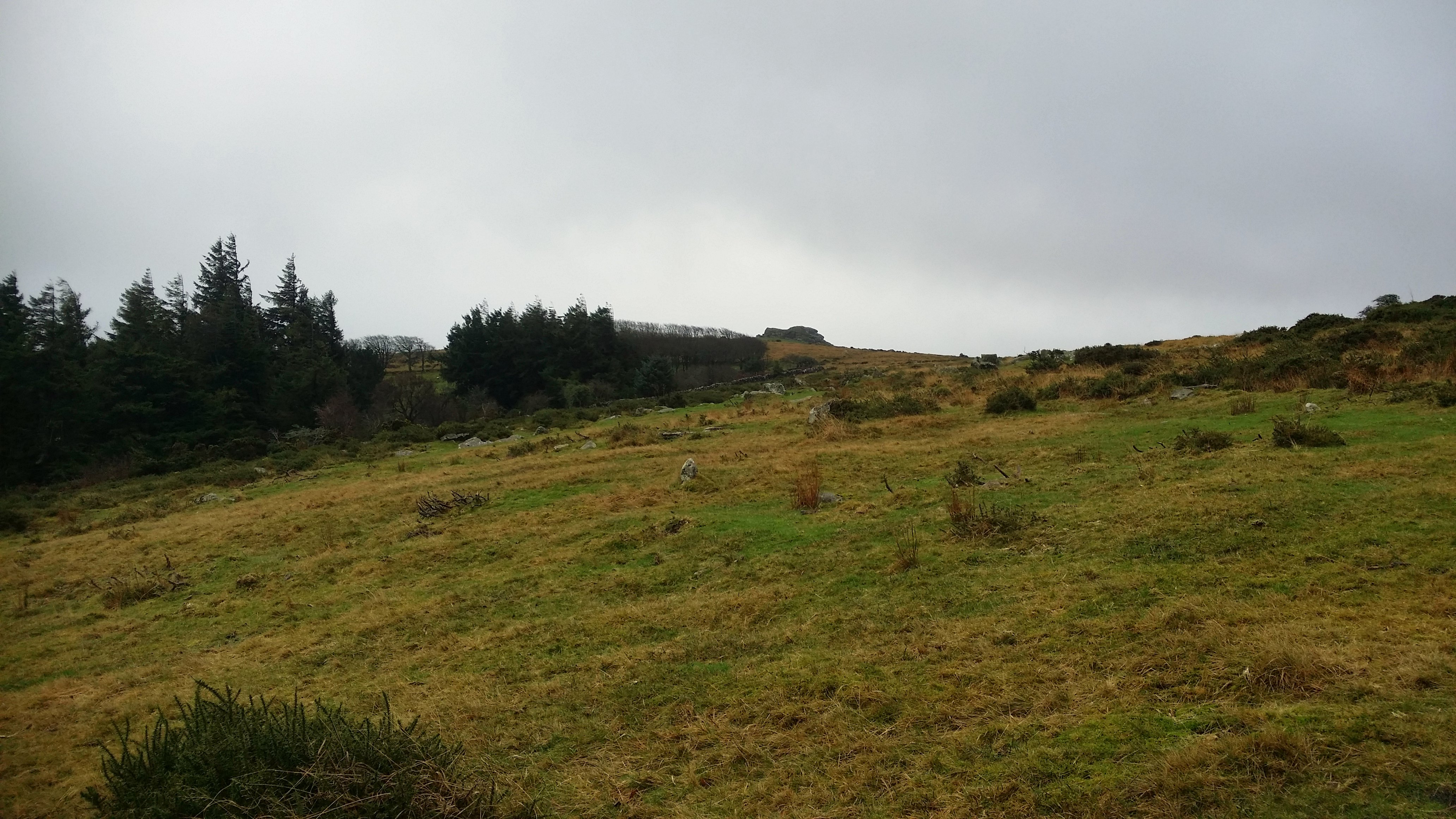 Kestor Rock #dartmoor #sh