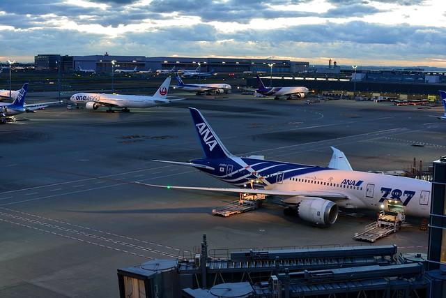 日の出の時間が近づいてきた羽田空港国際線ターミナルの写真