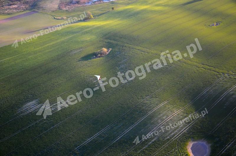 Mazurskie pola w maju.