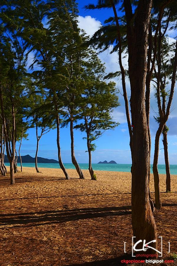 Hawaii_0223
