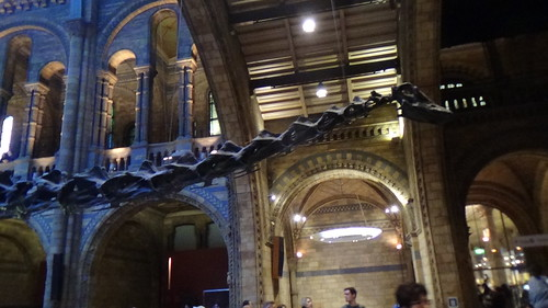 Natural History Museum Kensington Jan 16 (5)
