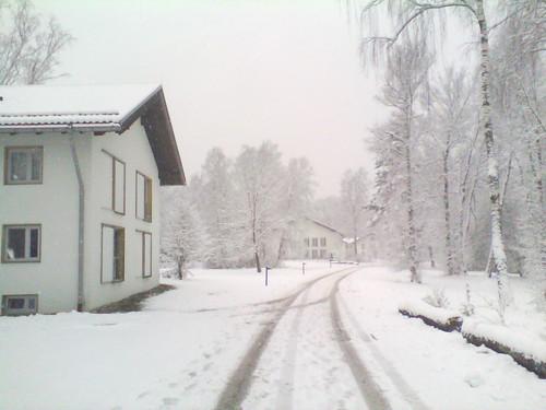 Schneewiesen