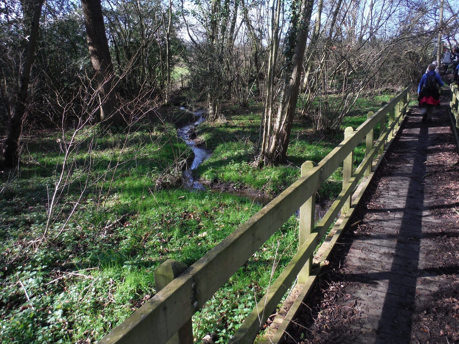 Boardwalk in Ironmongers Copse, Beenham SWC Walk 117 Aldermaston to Woolhampton (via Stanford Dingley)