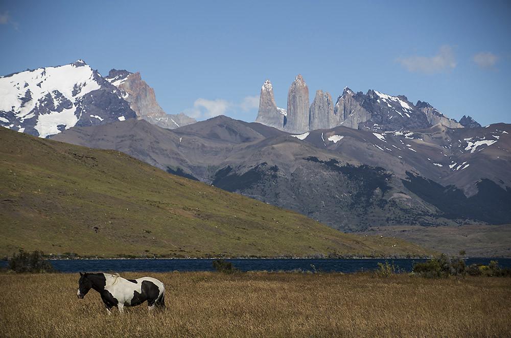 Patagonia 2016