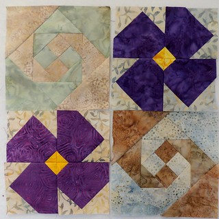 Snails Trail and Violet Blocks
