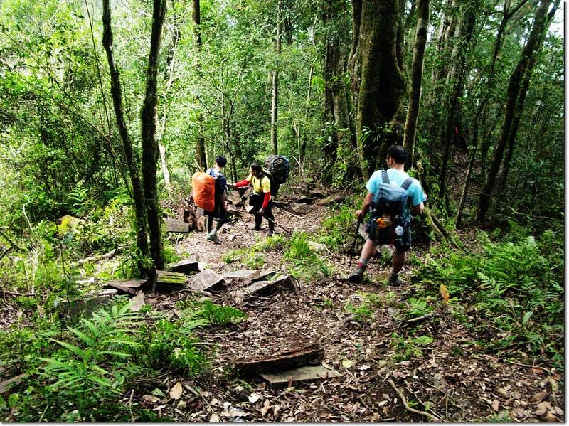 斯拉巴庫山登山途中景觀 8