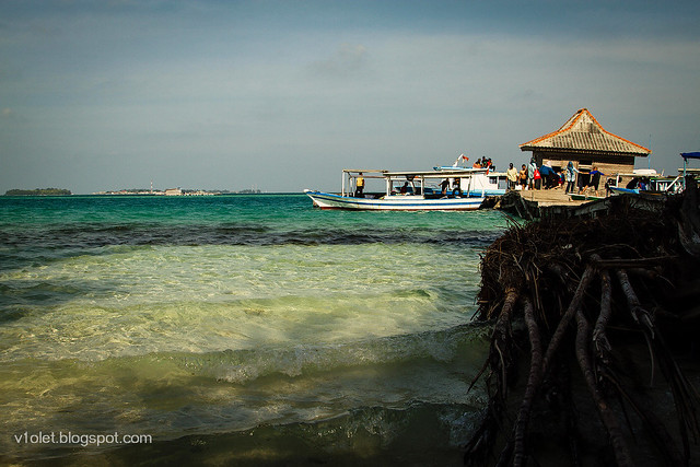 Pulau Semak Daun1-2241rw
