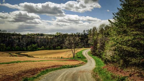 road trees nature landscape virginia spring farm fujifilm gravelroad xt1 bobbell pittsylvania