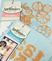 #craft toys just arrived!  Working on some #invitations using my #spellbinders #grandcalibur machine.  Just waiting for my #paperstock to arrive.  #crafthappy. And can't wait to get started!  Love these #dies..