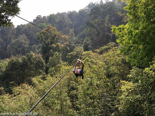 Gibbon Experience 04