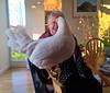 Mum & chicken - birthday supper portrait