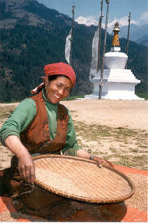 Nepal Woman Husking Rice Bonanza READ