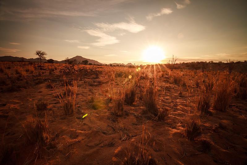 Namibia '15 #2 897
