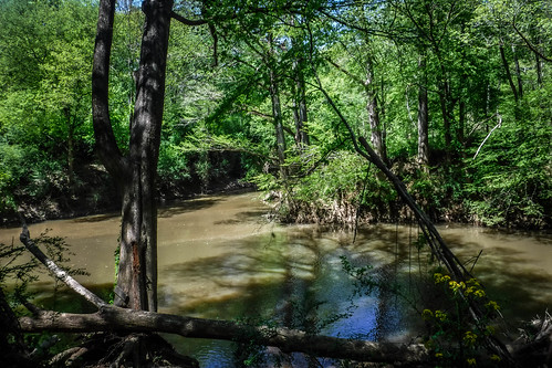 Turkey and Stevens Creeks-91
