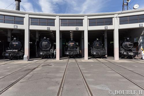 Umekoji Steam Locomotive Shed (20) D50-140, D52-468, C59-164, C53-45, C51-239