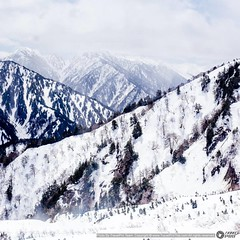 #ashikuraji #tateyama จาก สถานีโมโรโดะ ข้ามไป สภานีไดคันโบะ เพื่อไปต่อกระเช้า ลงไปที่สถานี #คุโรเบะไดระ  #ทราเวิลโปร #TravelProThai #TravelProThai.com #vsco #adobepost #travelphotographer #ทัวร์ญี่ปุ่น #japansnowwall