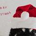 secret santa 52/52 by sure2talk