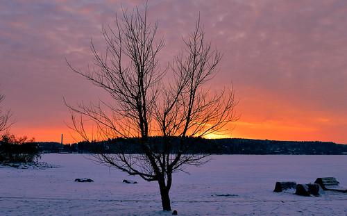 winter lake snow nikon talvi lunta järvi auringonlasku nikond3200 d3200