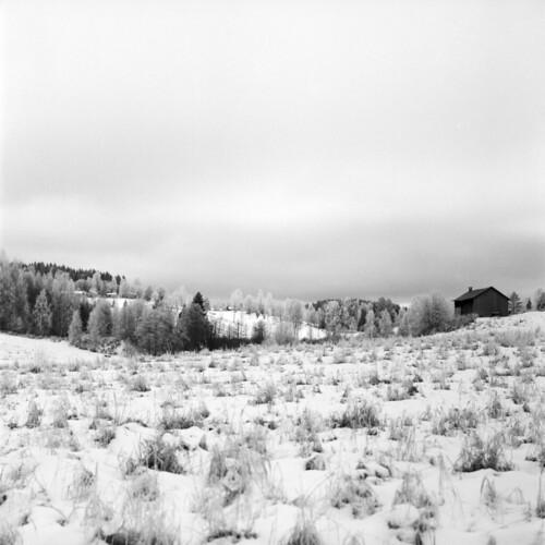 winter blackandwhite bw 6x6 film home monochrome rollei mediumformat square frozen frost sweden 120film mf rodinal värmland filmphotography kiev88cm carlzeissjena biometar filmisnotdead iamfilm retro400s believeinfilm