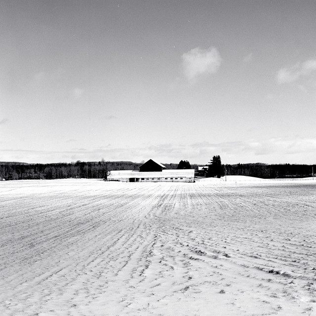 Dair Farm in the Winter