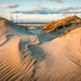 Sand Dunes I by James Duckworth