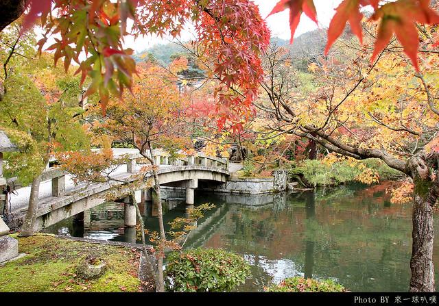 京都-永觀堂047